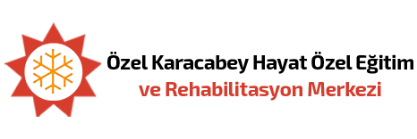 Karacabey Hayat Özel Eğitim ve Rehabilitasyon Merkezi
